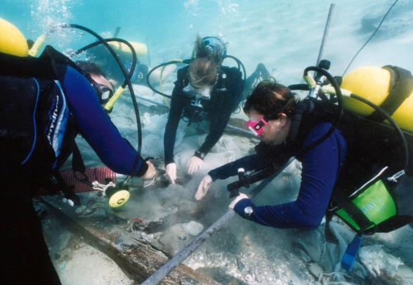 Careers in Science: Marine Biologist - Youth Village